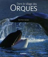 dans-le-sillage-des-orques_1_